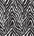 zebra seamless background vector image vector image