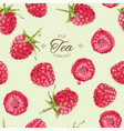 raspberry tea seamless pattern vector image