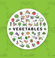 vegetables banner fresh vegetarian food veggie vector image