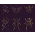 Set of the insects design elements vector image