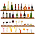 collection of bottles and glasses vector image vector image