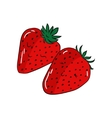 Fruit strawberry vector image