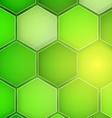 Abstract green background hexagon vector image vector image