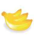 three banana vector image