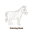 Coloring book zebra african savannah animal vector image