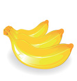 three banana vector image