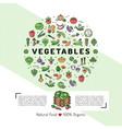 vegetables card concept organic shop natural vector image