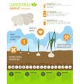 Gardening work farming infographic Garlic Graphic vector image