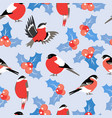 christmas pattern with leaves berries holly and vector image