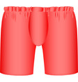 red mens boxer briefs vector image