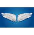 White wings on blue background vector image