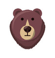 bear cartoon face vector image