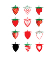 Collection of strawberry vector image