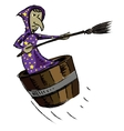 Witch isolated on white background vector image vector image