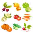 cartoon organic vegetables set vector image