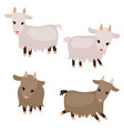 set of cute goats set of cute goats vector image