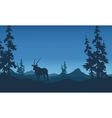 Antelope silhouettes beautiful landscape vector image