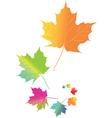 Autmn Leaves vector image