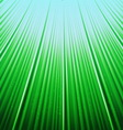 Bottom up view grass to blue sky vector image