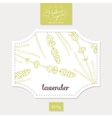 Product sticker with hand drawn lavender leaves vector image