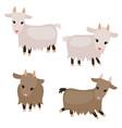 set of cute goats set of cute goats vector image