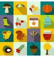 Autumn icons set flat style vector image