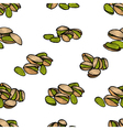 Pistachios pattern including seamless vector image