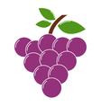 Icon grape vector image