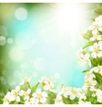 Spring border background EPS 10 vector image