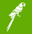 brazilian parrot icon green vector image