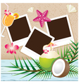 Coconut Fruit and Summer Objects with Frame vector image