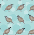 Seamless pattern with funny cute quail bird on a vector image
