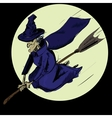 Witch flying on the broom vector image