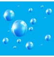 Transparent Bubbles on Blue Background vector image