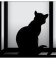 Cat on the window vector image