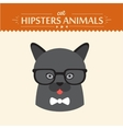 Fashion Portrait of Hipster Cat with glasses and vector image
