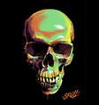 paint graffiti skull vector image