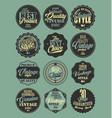 premium quality retro badges collection blue vector image