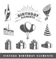 Set of elements of the birthday vector image
