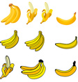 Set of the fresh banana icons vector image