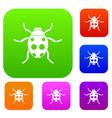 ladybug set collection vector image