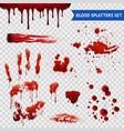 Blood Spatters Realistic Samples Transparent Set vector image