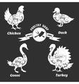 Poultry cuts poster Chicken and duck goose vector image vector image