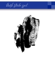 black ink abstract hand drawing brush strokes spot vector image vector image