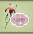 Vintage border iris vector image vector image