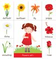 Printable flash card for flowers and little girl vector image