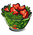 salad with tomatoes vector image vector image