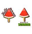 watermelon popsicle stick vector image