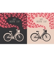 Valentine card with bike vector image