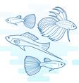 Set of different aquarium fish vector image